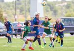 The lionesses, in wait for the Levante UD